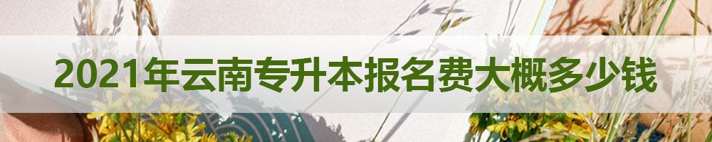 2021年云南专升本报名费大概多少钱