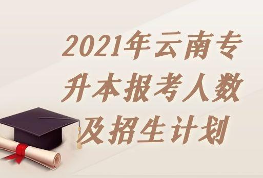 2021年云南专升本报考人数及招生计划