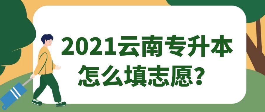 2021云南专升本怎么填志愿?